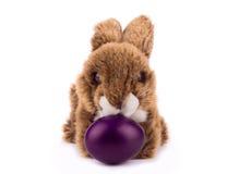 Conejo de la felpa de Pascua Fotografía de archivo libre de regalías