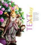 Conejo de la muñeca Fotografía de archivo libre de regalías