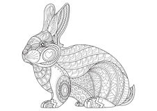 Conejo de la página que colorea Vector dibujado mano del conejito del garabato del vintage Fotografía de archivo