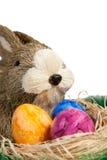 Conejo de Pascua con los huevos de Pascua coloridos Fotografía de archivo libre de regalías