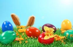Conejo de Pascua en hierba imagenes de archivo