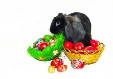 Conejo de Pascua y dos cestas con los huevos de Pascua Fotografía de archivo libre de regalías