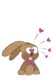 Conejo del amor Foto de archivo