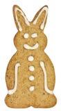 Conejo del pan de jengibre con el camino de recortes Imagen de archivo libre de regalías