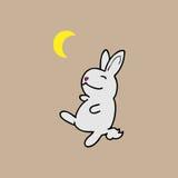 Conejo del tango Imágenes de archivo libres de regalías
