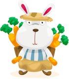Conejo divertido con la zanahoria