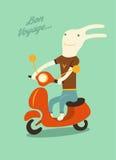 Conejo divertido de la historieta que monta una vespa Ilustración del vector Imagen de archivo libre de regalías