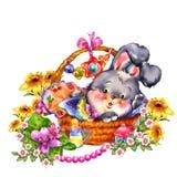 Conejo divertido en una cesta con las flores hermosas Fotografía de archivo libre de regalías