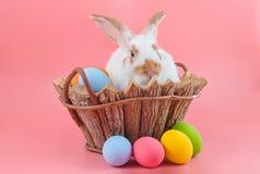 conejo en cesta de madera con los huevos de Pascua en fondo rosado imágenes de archivo libres de regalías