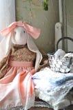 Conejo en falda Foto de archivo libre de regalías