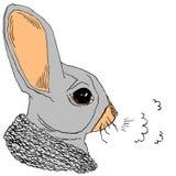 Conejo en invierno Fotografía de archivo libre de regalías
