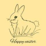 Conejo en la hierba Fotografía de archivo