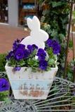 Conejo en las flores violetas para pascua Imagen de archivo