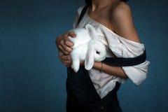 Conejo en las manos Foto de archivo