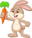 Conejo feliz de la historieta que sostiene la zanahoria Foto de archivo