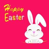 Conejo feliz de Pascua Imagenes de archivo