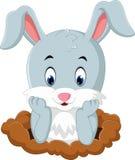 Conejo lindo de la historieta Fotografía de archivo libre de regalías