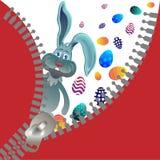 Conejo y cremallera del rojo Foto de archivo libre de regalías