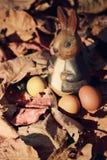 Conejo y huevos de Pascua coloridos en naturaleza Imagen de archivo