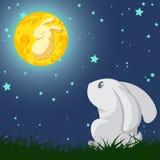 Conejo y la luna Fotos de archivo