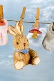 Conejo y pacificador Imágenes de archivo libres de regalías