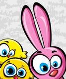 Conejo y pollos