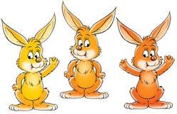 Conejos Imagen de archivo