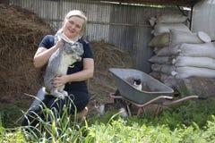 Conejos crecientes en una granja Fotos de archivo libres de regalías