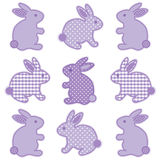 Conejos de conejito Imagen de archivo libre de regalías