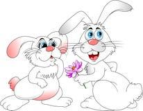 Conejos de los amantes Fotografía de archivo libre de regalías