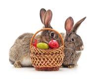 Conejos de Pascua con los huevos coloreados Foto de archivo libre de regalías
