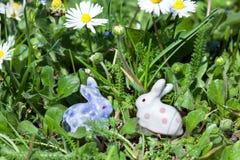 Conejos de Pascua ocultados en la hierba Fotos de archivo libres de regalías
