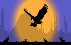 Conejos del ataque del águila Foto de archivo libre de regalías