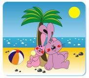 Conejos en la playa Fotografía de archivo libre de regalías