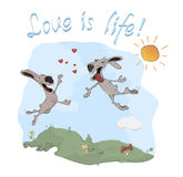 Conejos y postal del amor Fotos de archivo