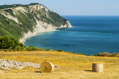 Conero - Cultivated Coast Royalty Free Stock Image