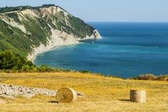 Conero - Gecultiveerde kust Royalty-vrije Stock Afbeelding