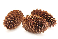 Cones Royalty Free Stock Photo