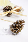 Cones for Christmas Stock Image