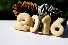 Cones and cookies 2016 Stock Photos