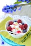 Cones de gelado da morango, do chocolate, da baunilha e do pistachio sobre o fundo branco Imagem de Stock Royalty Free