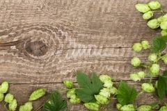 Cones de lúpulo verdes frescos no fundo de madeira velho Ingrediente para a produção da cerveja Vista superior com espaço da cópi fotos de stock