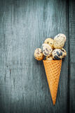 Cones are decorated for Easter quail eggs and Stock Photo