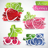 Ícones do fruto Foto de Stock