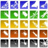 Ícones do inseto Fotografia de Stock