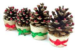 Cones do Natal Fotos de Stock