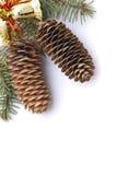 Cones do pinho do Natal Foto de Stock