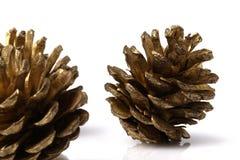 Cones do pinho do Natal que descansam em uma tabela branca Foto de Stock