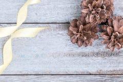 Cones do pinho e fita dourada Imagem de Stock Royalty Free
