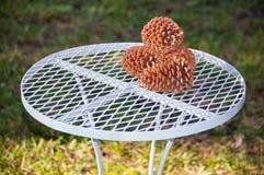 Cones do pinho na tabela Fotografia de Stock